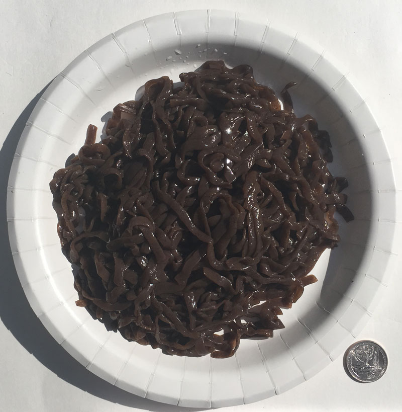 Konjac Oat Plum Fiber Pasta - Linguine Product image